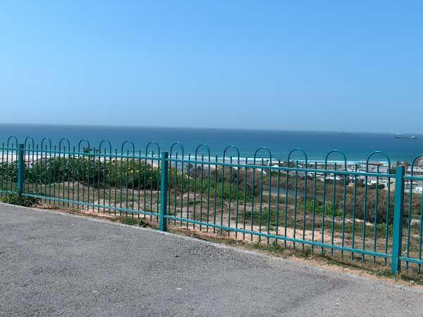 גדרות - גדר דגם דליה לחצרות ובתים משותפים - גדר דליה לגידור מרחבים גדולים